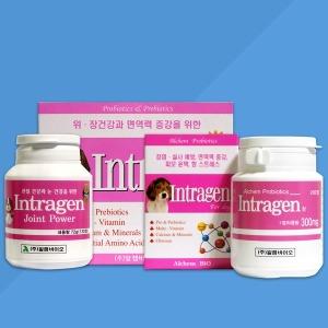 인트라젠 영양제 관절/위/장/종합/강아지고양이영양제