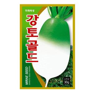 강토골드무 김장무 무씨앗 육질이 치밀하고 아삭아삭