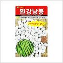 /솔림텃밭몰/ 흰 강낭콩 씨앗