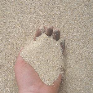 조류용 모래(병아리/메추리/애완닭) 20kg