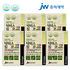 중외제약 닥터스징코 기억력개선 / 6개월분 JW중외제약