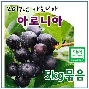 (2017무농약)햇아로니아 생과 5kg묶음