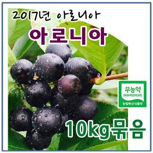 (2017무농약)햇아로니아 생과 10kg묶음