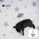 클라우드 펫매트 폴딩타입 2단 ㅣ 애견매트  슬개골보호