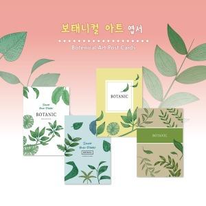 보태니컬엽서/식물/보태니컬/인테리어/엽서/50장/AS08