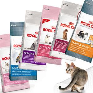 400g 추가증정/ 로얄캐닌캣 3.5~4kg 고양이사료