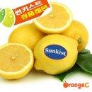 팬시 레몬 50개입(120g내외) 썬키스트 미국산