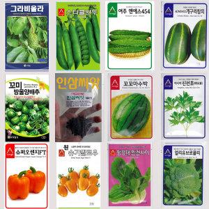 씨앗130종/허브/새싹/약초/방울양배추/그라비올라/스