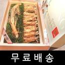 9+1/선물/추석/명절/설/인삼/수삼/홍삼/세트/삼선정