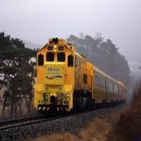 서해 금빛 열차 군산 시간 여행 전주 한옥마을 당일치기 코레일 투어 기차여행 국내 온돌 마루 방