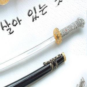 (비젼)황룡도 명품/가검/도검/장검/무술