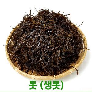 싱싱한 생톳1kg / 2kg 청정완도산 톳 싱싱지오