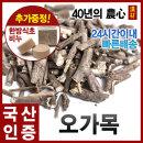 오가목(오가피)600g/국내산(충북제천/생산자/강대석)