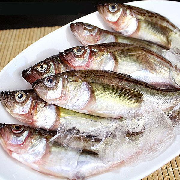동해 알배기 햇 도루묵(급냉) 대 40마리(3.6kg내외)