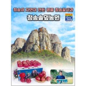 청송꿀사과/청송사과/고당도부사출시10kg/5kg