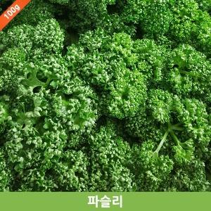파슬리/파세리/parsley/향신료/생잎/fresh