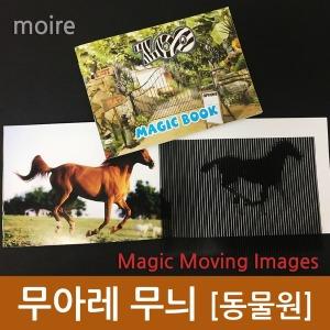 무아레 무늬(동물원)/신기한그림/교과수업