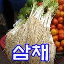 신선삼채1kgX10봉/생삼채 /삼채요리/삼채뿌리/삼채잎