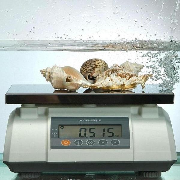두홍 정밀급 물방개 방수 전자 저울 3kg~50kg/0.1~2g