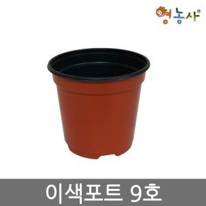 이색포트 갈색 9호 모종화분 교육용 학습용