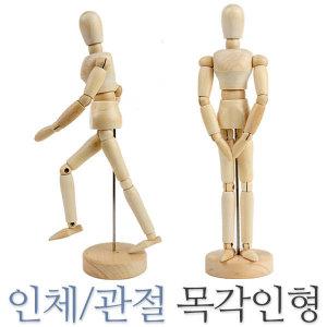 관절인형 인체모형 목각인형 원목인형 미술용품 데생
