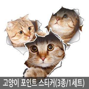 고양이 포인트 스티커 벽지 시트지 3종 1세트