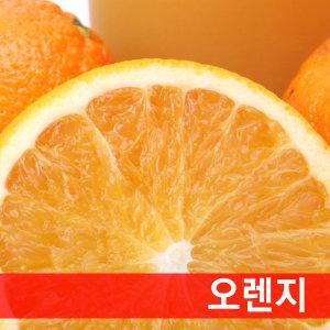 (9kg 대용량) 발렌시아 오렌지 / 싱싱함 쥬스용