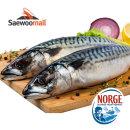 노르웨이 고등어 10kg 24-28미 골드사이즈 선도특A