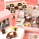 꽁냥꽁냥3단 초콜릿만들기세트/DIY/초콜렛 발렌타인