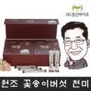 원조 발효 현미 꽃송이버섯 효소 가루효 천 스틱