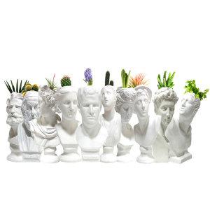 석고상화분 10종 공기정화식물 틸란드시아 이오난사