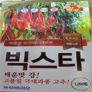 빅스타  고추씨앗 ( 고품질 극대과종다수확품종)