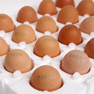 동물복지 무항생제 방사 유정란 계란 40알