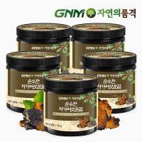 (현대Hmall) 마트데이  GNM자연의품격  순수한 차가버섯 분말 (100gx5통)