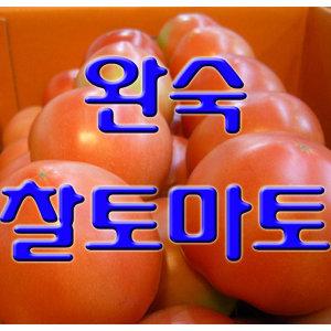 고당도 완숙 찰 토마토 10kg 대용량 무료배송 특가