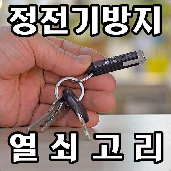 B771/정전기방지/정전기방지용품/정전기방지열쇠고리