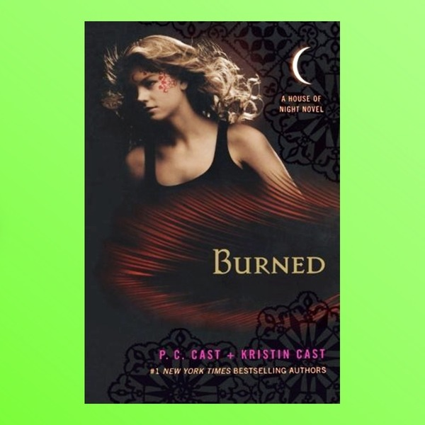 영문소설 Burned A House of Night