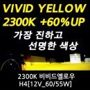 가장 진한2300K 비비드옐로우 60%밝기UP H4_12V 60/55W