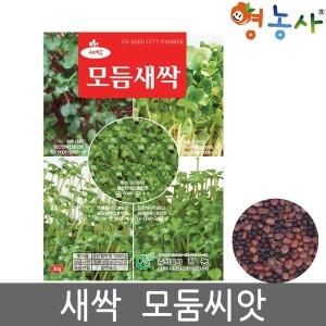 모둠새싹씨앗 /30g 새싹씨앗 모듬 쌈채 모듬씨앗 종자