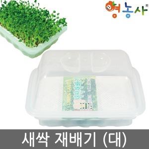 새싹재배기 (대) / 재배기 새싹 재배 새싹씨앗 키우기