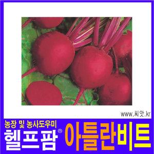 헬프팜 아틀란비트 5000립 아시아종묘 종자 씨앗