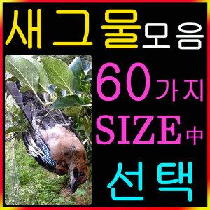 새그물 모음(참새 직박구리 비둘기 까치 꿩 그물)