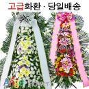 파격세일 대형근조화환/축하화환 당일배송 전국꽃배달