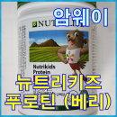 암웨이 뉴트리키즈 푸로틴(베리) 단백질