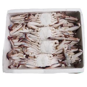 조은상사 냉동 꽃게 4kg1박스12미 18미내외 간장게장