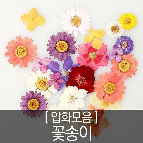 {압화-꽃송이} 압화 압화공예 압화편지 압화네일 캔들