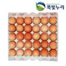 계란 HACCP인증 구운계란 부활절 대란150알 생산일표기