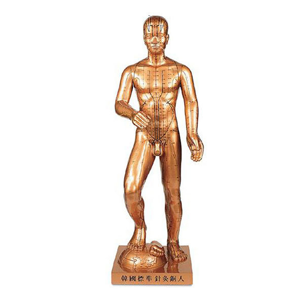 한국표준침구 동인형 86cm 해성 동색 황금