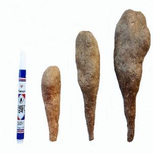 소백산농장 마 10kg 안동마 산마 참마 장마