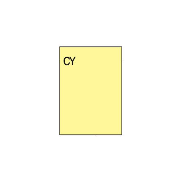 106185 컬러라벨(CY-3130/10매/한국폼텍)
